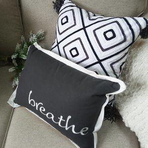 "NEW! SET Of ACCENT FRAMHOUSE Pillows ""BREATHE"""